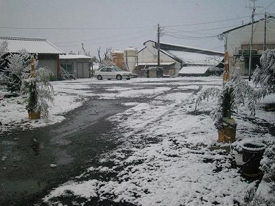 2010年大晦日 雪